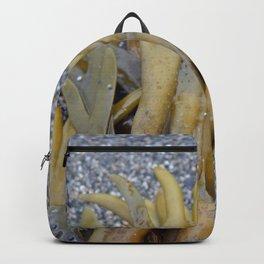 Kelp Bladders Backpack