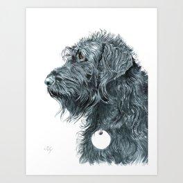Black Labradoodle Art Print