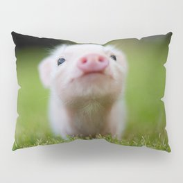 Little Pig Pillow Sham