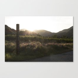 Summer time Sunset Canvas Print