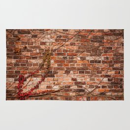 Red ivy hedge climber on wall Rug