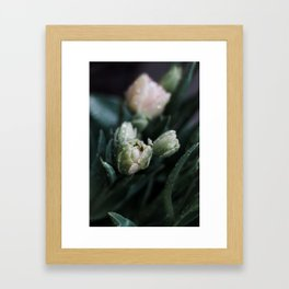 Returning Spring II Framed Art Print