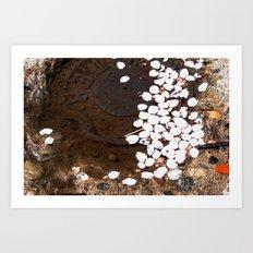 puddle petals Art Print