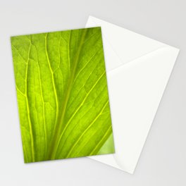 Green Leaf Abstract Stationery Cards