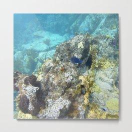 Watercolor Seascape, St John 67, USVI Metal Print