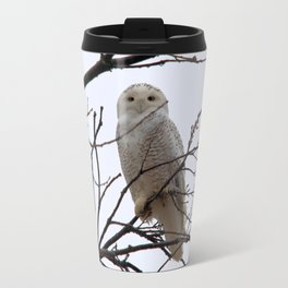 Snowy Owl in the Treetop Travel Mug