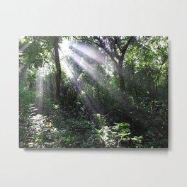 Rainforest Metal Print