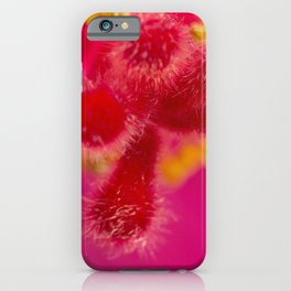 Macro Image Of A Big Pink Hibiscus Flower The Xandri Collection iPhone Case