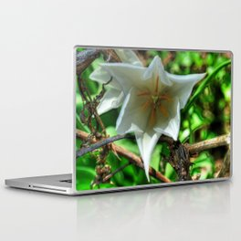 Flower - HDR Laptop & iPad Skin