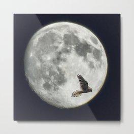 Kestrel Moon Metal Print