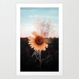 Sunflower fading Art Print