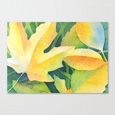 Bright leaf study Canvas Print