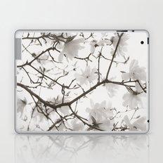 Magnolia Branches Laptop & iPad Skin