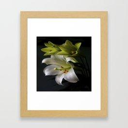 Elegant Water Lily Framed Art Print