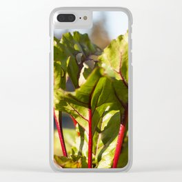 Beet Leaves Clear iPhone Case