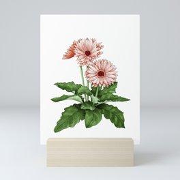 Gerbera Daisy Mini Art Print