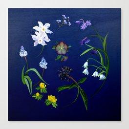 Transient - winter blooms Canvas Print