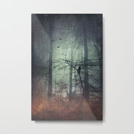 endurance Metal Print