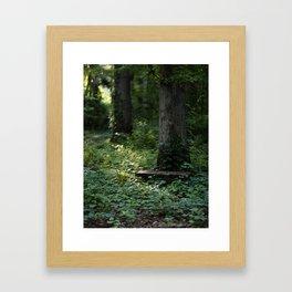 light broke in Framed Art Print
