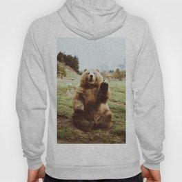 Hi Bear Hoody