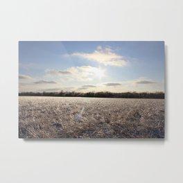 Icy Plain Metal Print