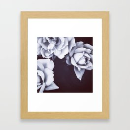 Company Framed Art Print