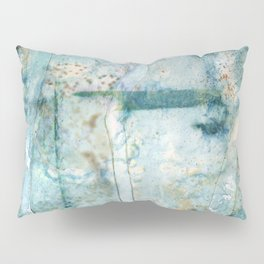 Water Damaged Pillow Sham