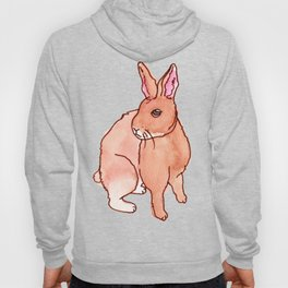 Brown Rabbit Hoody