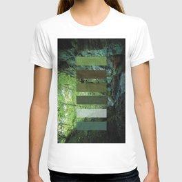 Nelson Ledges Color T-shirt