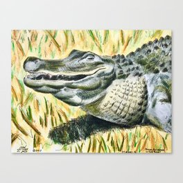 Gator Buddy Canvas Print