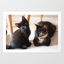 Mama Cat and her Pride of Joy Art Print