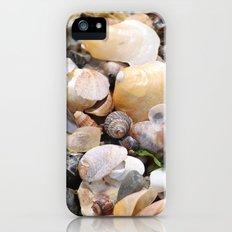Shells Slim Case iPhone (5, 5s)