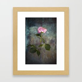 Single Wilted Rose Framed Art Print