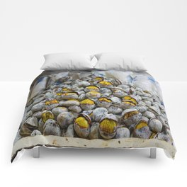 Roasted chestnuts Comforters