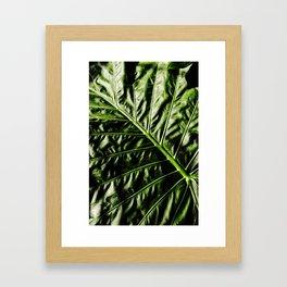Rib And Veins Framed Art Print