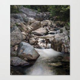 Roaring Brook Falls Canvas Print