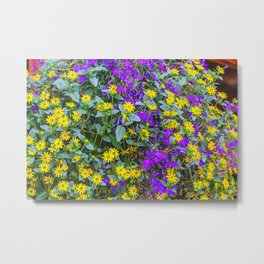 Alpine flowers in the Gressoney valley near Monte Rosa Metal Print