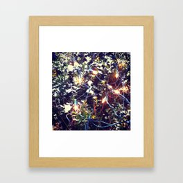 Sparkle Sparkle Framed Art Print