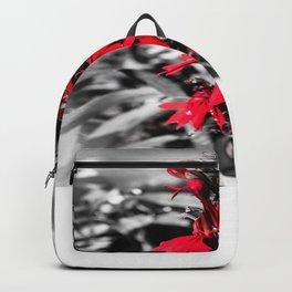 Cardinal Flower Backpack