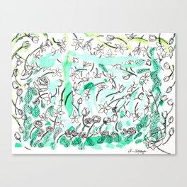 Sampaguita Canvas Print