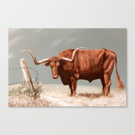 Longhorn Steer painting Canvas Print