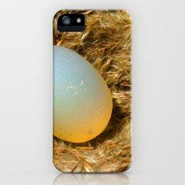 egg + nest iPhone Case