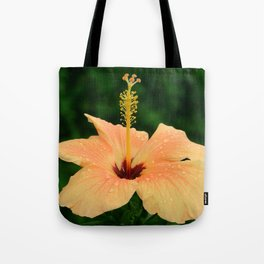 Peach Hibiscus Tote Bag