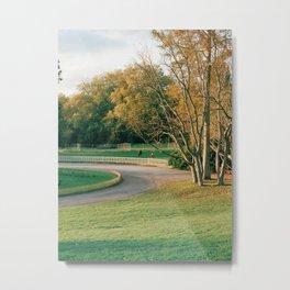 Fall in London Metal Print