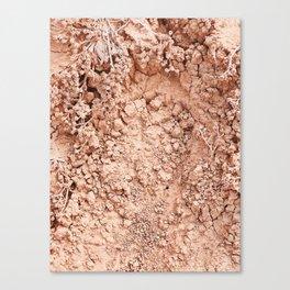 Cliff Crumble Canvas Print