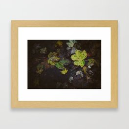 Winter Leaves Framed Art Print