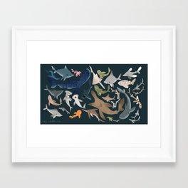 "FINconceivable Still ""Sharks"" Framed Art Print"