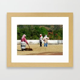 Drying Coffee Framed Art Print