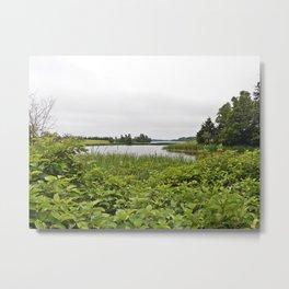 At the River's Edge Metal Print