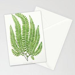 Edward Joseph Lowe - Adiantum Pubescens Stationery Cards